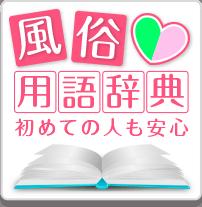 風俗用語辞典