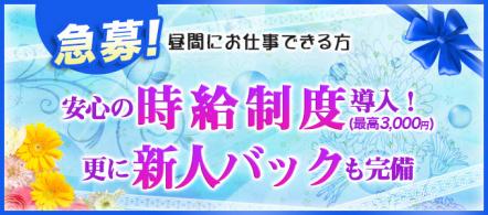 イエスグループ バッドカンパニー(BADCOMPANY) 松山店